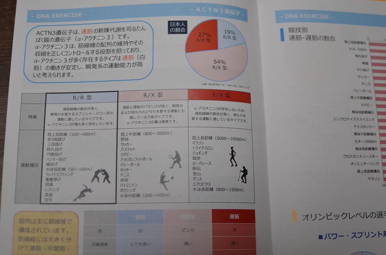 運動能力遺伝子検査をやってみた(結果編)